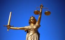 Carlos Ghosn : le PDG de Renault recherché par Interpol