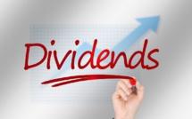 Dividendes : un nouveau record pour 2019