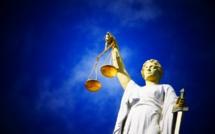 Carlos Ghosn condamné aux Pays-Bas pour des revenus indûment perçus