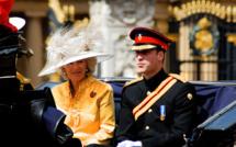 Après l'armée, le Prince William veut valider un diplôme de management agronomique